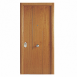 Puerta entrada serie MM7